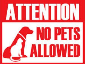 Exhilarating image intended for no pets allowed sign free printable
